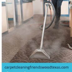 carpet-steam-cleaners